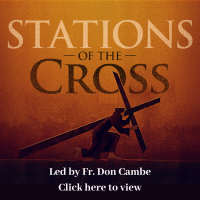 Stations of the Cross Fr Don