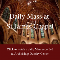 Daily Mass link